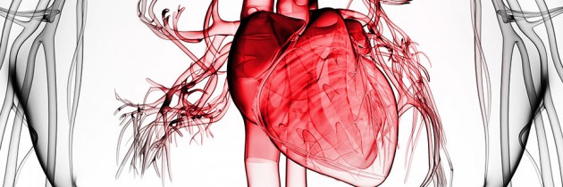 Choroba niedokrwienna serca i inhibitory ACE